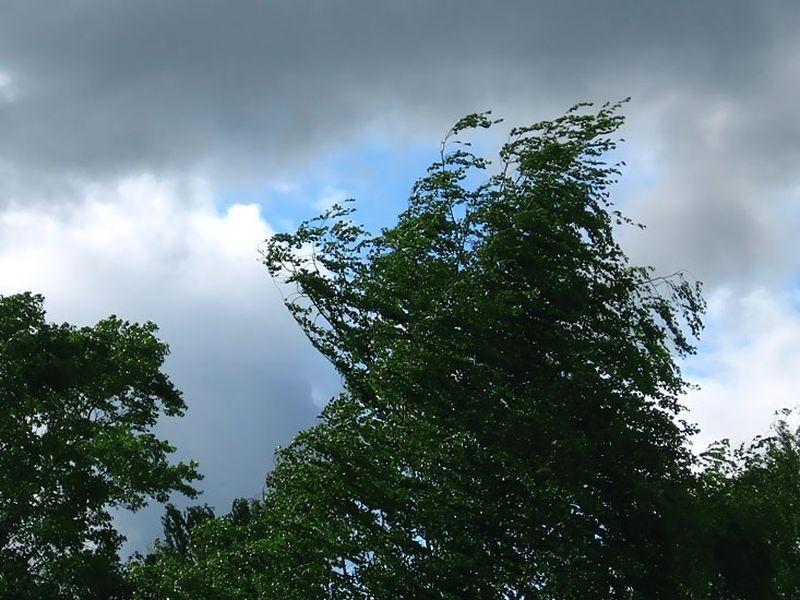 В Алтайском крае штормпрогноз с дождем сменился на штормпрогноз со снегом