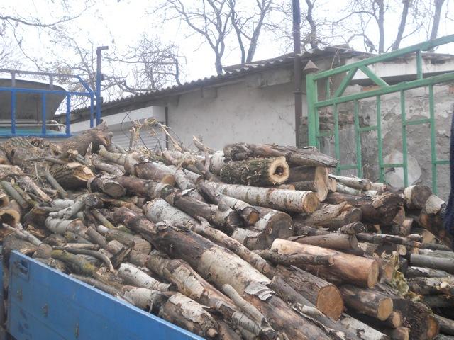 Херсонское КП передало дрова защитникам Родины, фото-1