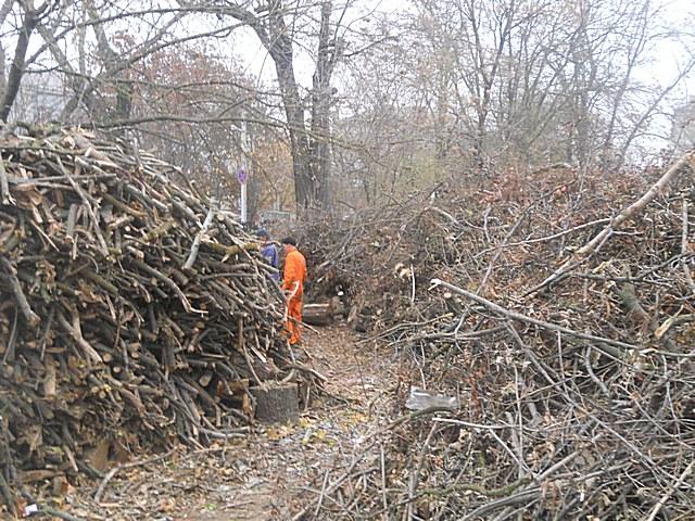 Херсонское КП передало дрова защитникам Родины, фото-2